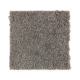 Top Card in Rolling Thunder - Carpet by Mohawk Flooring
