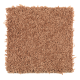 Sassy Arrangement in Sweet Potato - Carpet by Mohawk Flooring