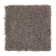 Tempting Example in Mineral Brown - Carpet by Mohawk Flooring