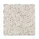 Woodspointe in Snowy Alps - Carpet by Mohawk Flooring