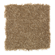 Ahead Of The Curve in Brunette - Carpet by Mohawk Flooring
