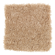 Graceful Beauty in Honey Butter - Carpet by Mohawk Flooring