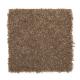 Stylish Story I in Saddle - Carpet by Mohawk Flooring