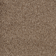 Extravagance in Fortress - Carpet by Mohawk Flooring