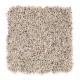 Island Delight I in Sugar Grove - Carpet by Mohawk Flooring