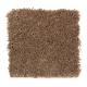 American Splendor III in Aged Brass - Carpet by Mohawk Flooring