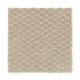 Greenhurst in Rock Wall - Carpet by Mohawk Flooring