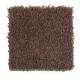 Exclusive Beauty in Kodiak - Carpet by Mohawk Flooring