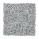Infinite Potential in Ashford - Carpet by Mohawk Flooring