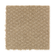Delmar Estates in 11 - Carpet by Mohawk Flooring