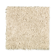 High Hand in Parchment - Carpet by Mohawk Flooring