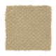 Unification in Chai Tea - Carpet by Mohawk Flooring