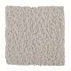 Lasting Outlook in Shadow Pearl - Carpet by Mohawk Flooring