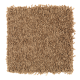 Smart Color in Tiki Hut - Carpet by Mohawk Flooring