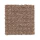Design Solutions in Crossroads - Carpet by Mohawk Flooring