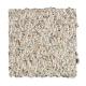 Andora Falls in Sandy Path - Carpet by Mohawk Flooring