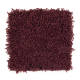 Bright Opportunity in Bordeaux - Carpet by Mohawk Flooring
