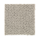 Taylor Cove in Taupe Medley - Carpet by Mohawk Flooring