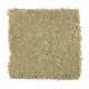 Truly Tender III in Dried Herb - Carpet by Mohawk Flooring