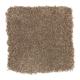 Beach Club IV in Saddlery - Carpet by Mohawk Flooring