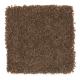 Coastal Path II in Native Soil - Carpet by Mohawk Flooring