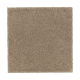 Natural Splendor II in Urban Taupe - Carpet by Mohawk Flooring