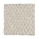Grande Appearance in Platinum - Carpet by Mohawk Flooring