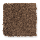 Chic Appearance in Ginger Jar - Carpet by Mohawk Flooring