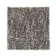 Memorabilia in Bed Rock - Carpet by Mohawk Flooring