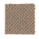 Domestic Bliss in Nougat - Carpet by Mohawk Flooring