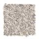 Mandolin Bay in Twig - Carpet by Mohawk Flooring