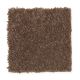 Common Values I in Deep Sable - Carpet by Mohawk Flooring