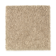 Eternal Allure II in Harvest Straw - Carpet by Mohawk Flooring