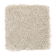 Benson Park in Birch Bark - Carpet by Mohawk Flooring