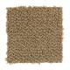 Taste Of Luxury in Hazelnut - Carpet by Mohawk Flooring