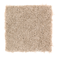 Tempting Example in Frosty Spice - Carpet by Mohawk Flooring