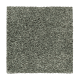 Relaxed Comfort I in Amazon - Carpet by Mohawk Flooring