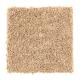 Sassy Arrangement in Muslin - Carpet by Mohawk Flooring