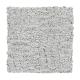Infinite Potential in Star Dust - Carpet by Mohawk Flooring