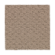 Elegant Structure in Griffin - Carpet by Mohawk Flooring
