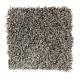 Subtle Influence II in Shadow - Carpet by Mohawk Flooring