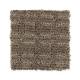 Sheer Genius in Deep Sable - Carpet by Mohawk Flooring