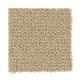 Trustworthy in Grass Cloth - Carpet by Mohawk Flooring
