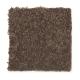 Stylish Story II in Reindeer - Carpet by Mohawk Flooring