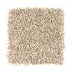 Fresh Start II in Light Safari - Carpet by Mohawk Flooring