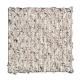 Zanzibar II in Fleece - Carpet by Mohawk Flooring