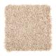 Smart Color in Jute - Carpet by Mohawk Flooring