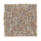 Memorabilia in Cimmaron - Carpet by Mohawk Flooring