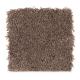 Emerging Image III in Cigar Leaf - Carpet by Mohawk Flooring