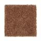 Serene Sierra in Pumpkin Spice - Carpet by Mohawk Flooring